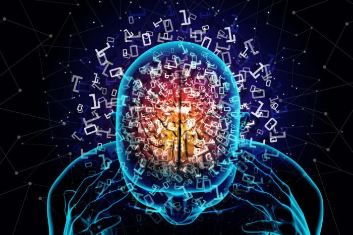 مغز انسان چطور کار میکند